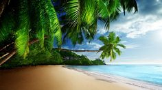 Tropical Beach Paradise K Ultra HD Desktop