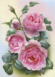 This counted cross stitch pattern of Pretty Pink Roses was created from the beautiful artwork of Olga and Alexey Drozdov. Vintage Diy, Vintage Flowers, Cross Stitch Rose, Rose Art, Arte Floral, Botanical Prints, Beautiful Roses, Beautiful Artwork, Watercolor Flowers