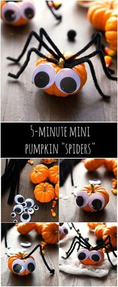 Super cheap and quick Halloween decoration - 5 minute mini pumpkin spiders Super cheap and qu Quick Halloween Crafts, Cheap Halloween, Halloween Decorations, Halloween Ideas, Happy Halloween, Pumpkin Decorating Contest, Pumpkin Contest, Decorating Ideas, Mini Pumpkins