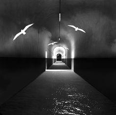 L'Origine de la lumière est une composition photographique de Michel Kirch, à découvrir en vidéo sur notre galerie en ligne dans le cadre de l'exposition Mémoires Visuelles