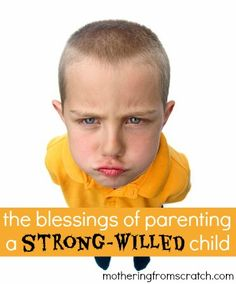 the blessings of parenting a strong-willed child