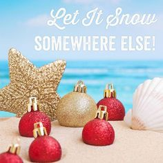 Christmas in the Caribbean. Let It Snow, Let It Be, Tropical Christmas, O Holy Night, Beach Quotes, Girl House, Beach Trip, Yule, Summer Time