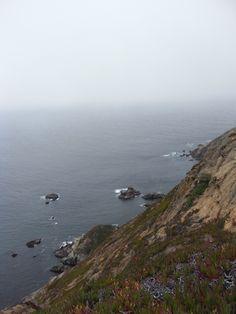 Pacific Coast - Whalewatching
