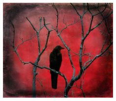 Red metallic crow picture Gothic decor Gothic crow by gothicrow, $17.00