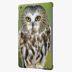 Awesome! This USA, Colorado. Close-up of northern saw-whet owl Case For iPad Air is completely customizable and ready to be personalized or purchased as is. It's a perfect gift for you or your friends.