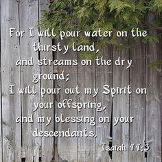 ISAIAH 44:3
