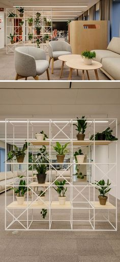 This modern office uses simple wire frame room dividers to define areas, and at the same time they allow people to see through to the other areas. #RoomDivider #OfficeDesign #Workplace