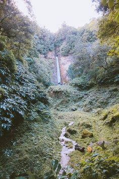 The waterfall between the mountains has thermal origins as well and originates from springs within the island. It's nothing but remarkable! Sao Miguel Azores, Origins, Waterfall, Island, Mountains, Day, Travel, Outdoor, Saint Michael