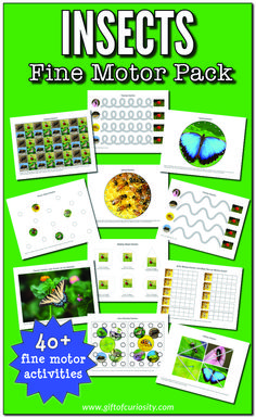 Insects Fine Motor Pack - Gift of Curiosity Insect Activities, Fine Motor Activities For Kids, Creative Activities For Kids, Outdoor Activities For Kids, Spring Activities, Preschool Ideas, Insects For Kids, Insect Crafts, Working With Children