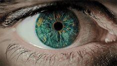 Pupil dilating