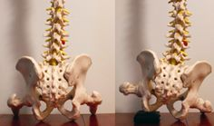 #Posture tip: #Sitting on a wallet effects you more than you think! #chiropractic