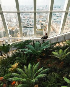 "3,992 Likes, 90 Comments - Ellie Dyduch ❀ (@dy_ellie) on Instagram: ""One from Sky Garden last week - one of my favourite spots in London, especially at this time of…"""