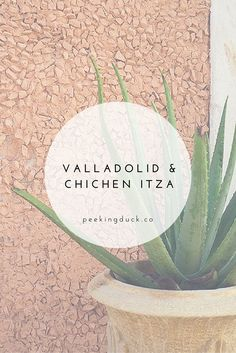A guide to Valladolid, a lovely town in the Yucatan Peninsula, Mexico.