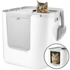 Modkat XL Cat Litter Box is an extra large litter tray with both top and side entry, including reusable litter inserts to keep it clean and handy litter scoop. Chinchilla, Chat Royal, Croquettes Chat, Grand Chat, Cat Vet, Cat Litter Tray, Wet Dog Food, Cat Care Tips, Cat Room