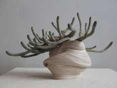Melbourne-based multidisciplinary artist Rose Wei — who works under the pseudonym Zhu Ohmu — uses art to explore the relationship between human and nature. For the ceramic 'Plantsukuroi' collection, the process of the 3D printer has been mimicked by hand, unveiling a unique interpretation of machine methods.