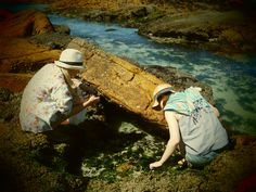 Coastal Foraging in Cape Town Rock Pools, Cape Town, Summer 2014, Coastal, Beach, Natural Swimming Pools, The Beach, Seaside