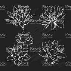 Ensemble de vecteurs de fleurs de lotus dessinés à la main. Croquis de collection botanique floral dans un style graphique noir et noir stock vecteur libres de droits libre de droits
