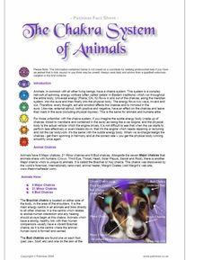 This pin shows 'Animal Chakra' information from the website of Reiki Master Teacher, Susan Rouse. Click on the pin to read about chakras, which are energy centers in humans and animals. Graphics showing chakra locations for a dog, cat, and a horse are shown, along with descriptions and an overview of each chakra. (The chakra information on Susan's website is listed as an original source, linking to a 2009 copyright by Patinkas.)