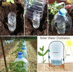 How to make simple solar water distillation system step by step DIY tutorial instructions 512x502 How to make simple solar water distillatio...