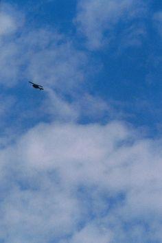 Helicopter, 35mm film photo by Karoliina Pärnänen