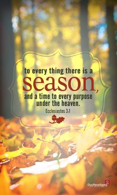 Ecclesiastes 3:1 (click on the image to download a free desktop wallpaper version)
