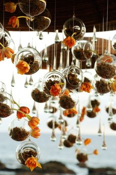 Suspended glass globes with orange flowers | Image by Chris + Lynn Photographers