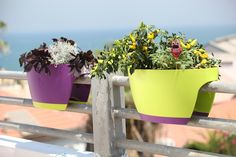 These railing planters sit securely on any railing or fence, and are especially designed to withstand harsh outdoor conditions.