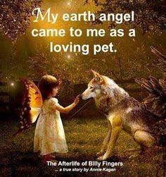 My pets are my earth angel. Animal Quotes, Dog Quotes, I Love Dogs, Puppy Love, Animals And Pets, Cute Animals, Amor Animal, Angels In Heaven, Pet Loss