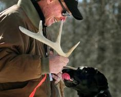 Training your dog for shed hunting - not a step by step tutorial but he gives you some great starting points