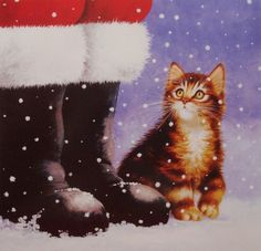 cat by Santa's boots