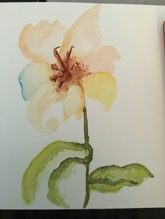Iris in watercolour by anjna