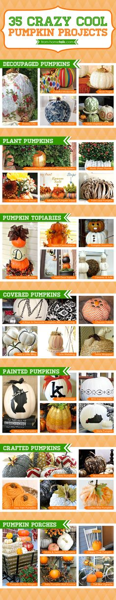 35+ pumpkin ideas!