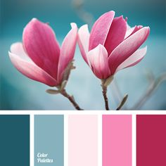 Delicate pink and turquoise will be good for basic background, and with a bright colour of fuchsia is good for details and accents. Thus, the room will loo.
