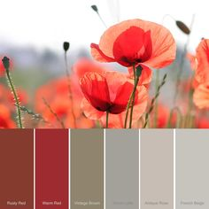 Kleur-rood-warm-red-rusty-red-rode-krijtverf-combineren-klein