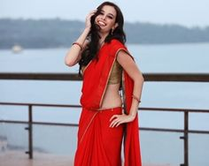 Evelyn Sharma In Saree Wallpapers
