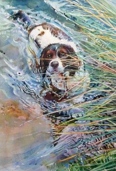 How to paint a pet portrait