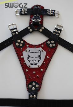 Exceptional handmade leather harness for your pitbull, american bulldog, american staff, rottweiller, cane corso.. etc.