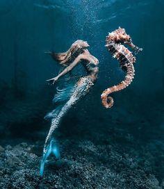 - Mermaid's Seahorse Original Mermaid photo by: Model: Digital seahorse art by: Decorative fins on my tail by: Fantasy Mermaids, Real Mermaids, Mermaids And Mermen, Pics Of Mermaids, Magical Creatures, Sea Creatures, Rikki H2o, Photo Bleu, Mermaid Pictures