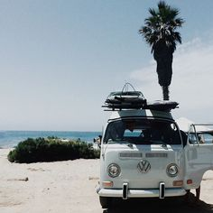 Summer | Beach | Caravan | Road trip | Palm tree | More on Fashionchick.nl
