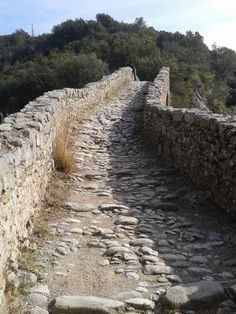 Pont de Llierca — The Garrotxa