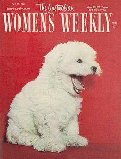 The Australian Women's Weekly, 17 April 1963
