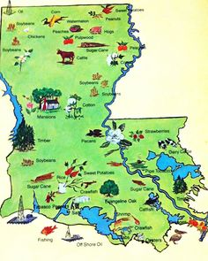 Agriculture in the State of Louisiana Task Cards Agriculture and