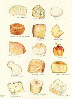 Love Eat, I Love Food, Cheese Gifts, Cheese Food, Watercolor Food, Watercolour, Food Sketch, Food Painting, Food Drawing