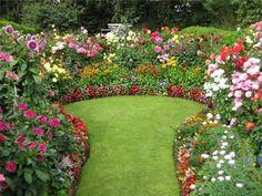 Beautiful Colourful Dahlias   National Garden Scheme Open This Weekend At  39 Osborne Street In Cheshire Pin Grow
