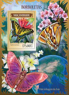 MOZ 14224 bButterflies (Papilio machaon)