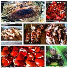 船で料理したシーフードなランチ #c#island #islandhopping #sea #beach #snorkeling #coral #lunch #seafood #lunch #philippines #フィリピン #スノーケリング #ビーチ #島