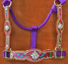 Crown Leather halter...I know two ponies that need a halter this fabulous!!!