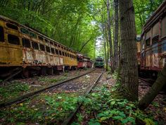 Train Graveyard - North Carolina | Around 78 abandoned and decaying subways, trains, and buses from all over the country were recently discovered by photographer Johnny Joo in a North Carolina forest.