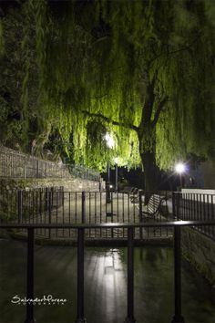 Nacimiento de rio. Benamahoma, Cádiz. Foto: Salvador Moreno #photo  #Nocturna