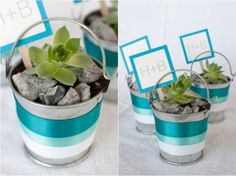 How To Decorate Succulent Pails | Shelterness